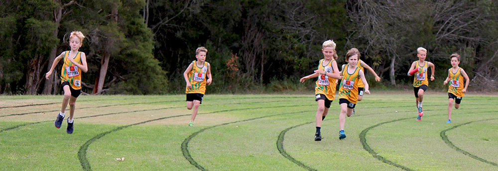 Wyong Little Athletics Inc