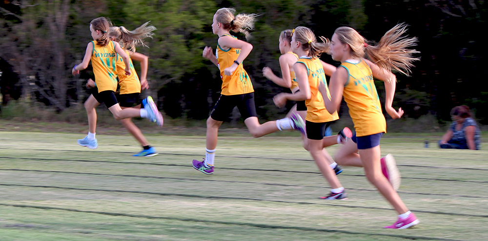 Wyong Little Athletics